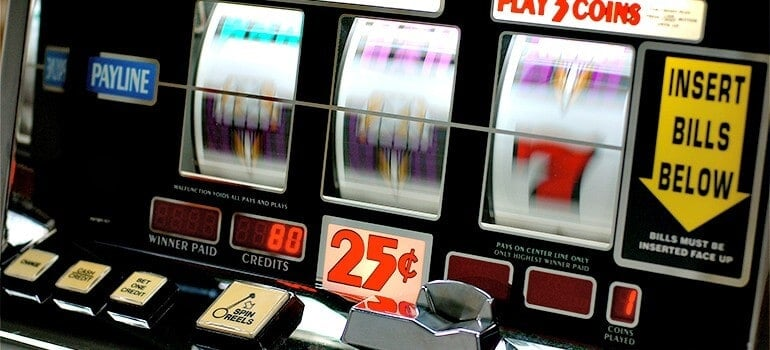 Scientists reduce behaviours associated with problem gambling in rats