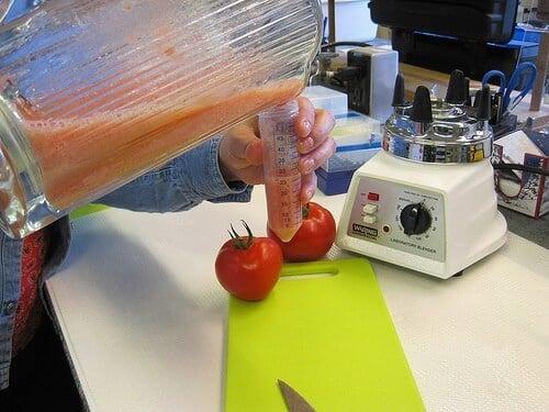Breeding a Tastier Tomato