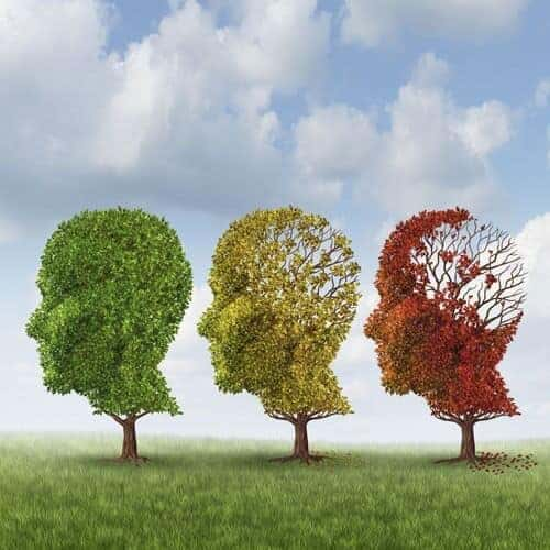 Alzheimer's disease researchers solve mystery of beguiling protein