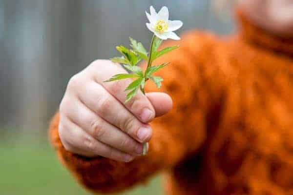 Cultivating happiness often misunderstood