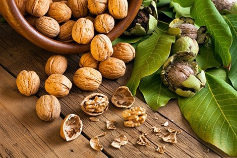 Daily serving of nuts may help control weight and benefit health