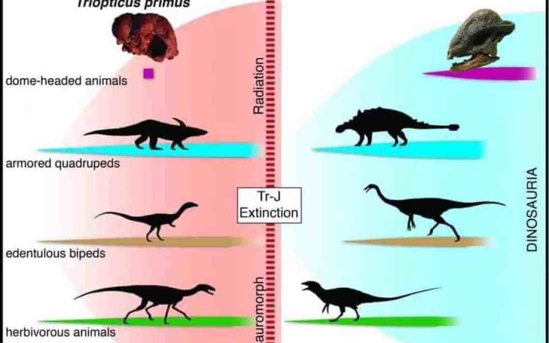 New Species of Ancient Texas Reptile Offers Clues to Evolution of Dinosaurs