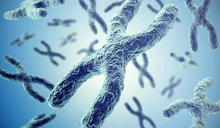 Roots of resistance to cancer drugs run deeper than a single gene