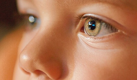 Zika and glaucoma linked for first time in new study