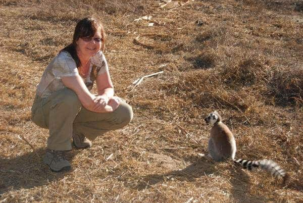 Ring-tailed lemurs of Madagascar: Going, going, gone?