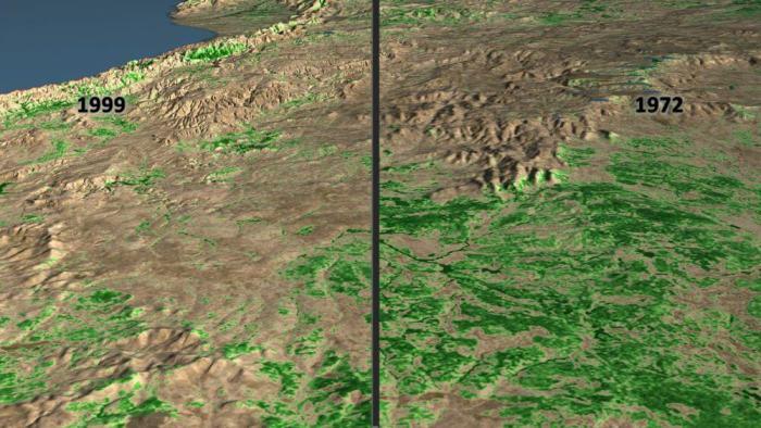 How satellite data changed chimpanzee conservation efforts