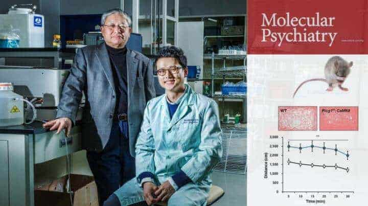 Bipolar disorder candidate gene, validated in mouse experiment