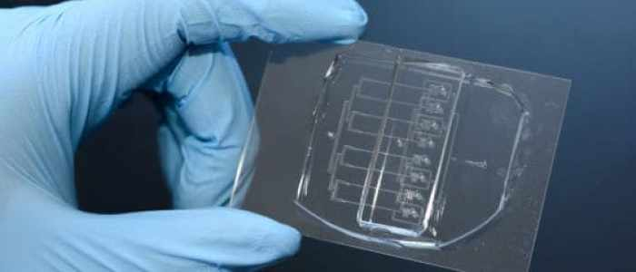 Scientists create a cellular guillotine for studying single-cell wound repair