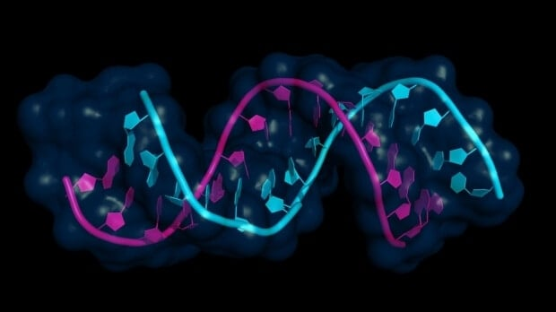 Video gamers get in on the gene editing action via CRISPR