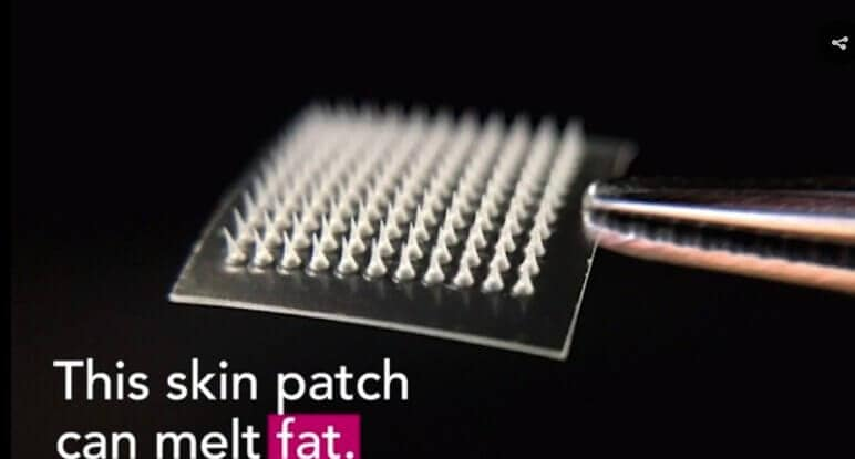 Skin patch melts fat in mice