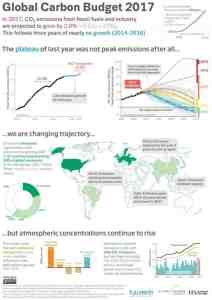 Carbon emissions on the rise again
