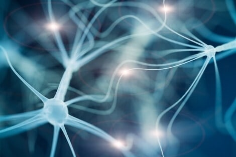 Lipid accumulation in the brain may be an early sign of Parkinson's disease