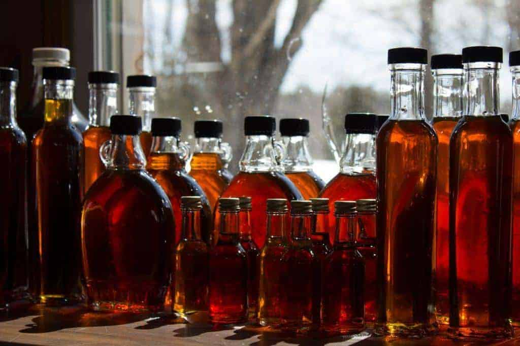 Maple Syrup Production to Decline in New England in the Next Century