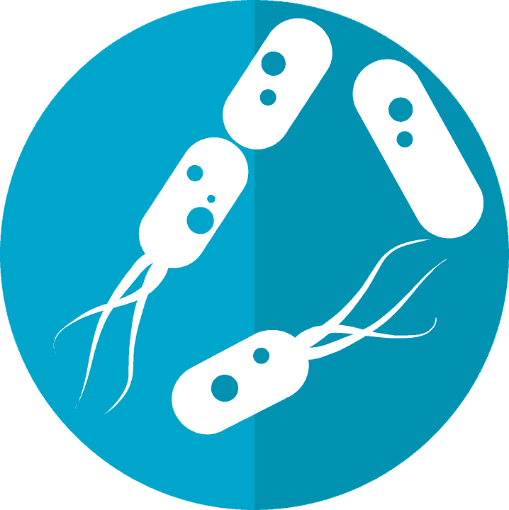 Remodeling unhealthful gut microbiomes to fight disease