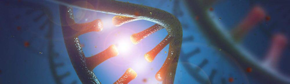 A key 'kill switch' in a gene-regulating protein group