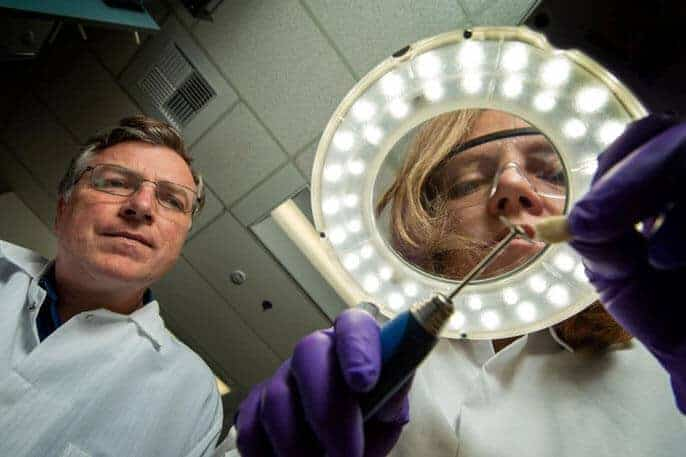 Where DNA falls short in cracking crimes, scientists can use this new tool