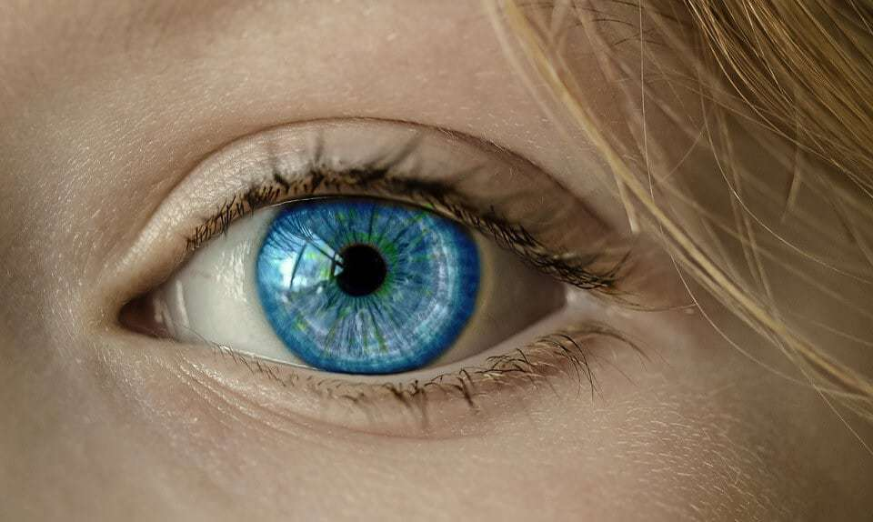 How the Eyes Might Be Windows to the Risk of Alzheimer's Disease