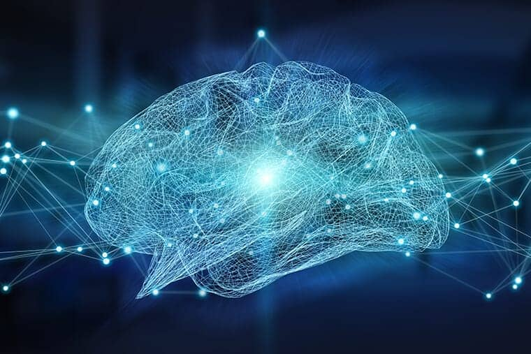 Brain tunes itself to criticality, maximizing information processing