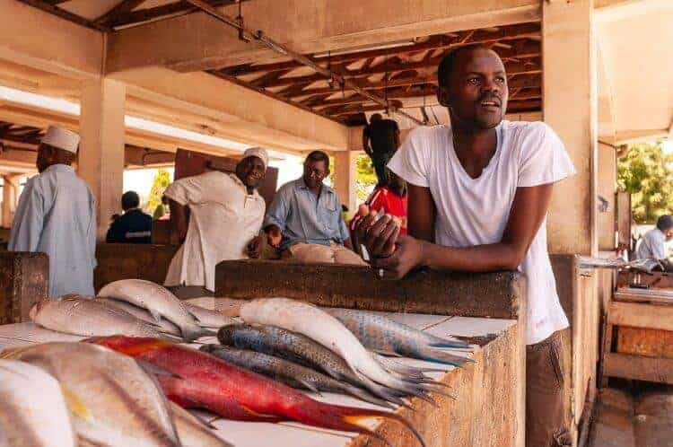 Fish micronutrients 'slipping through the hands' of malnourished people