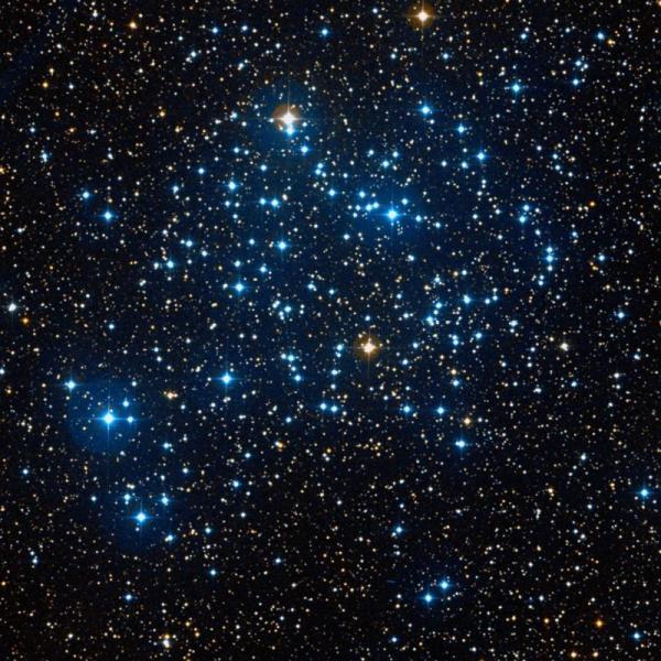 Offener Sternhaufen M35. Bild: Wikisky.org, gemeinfrei