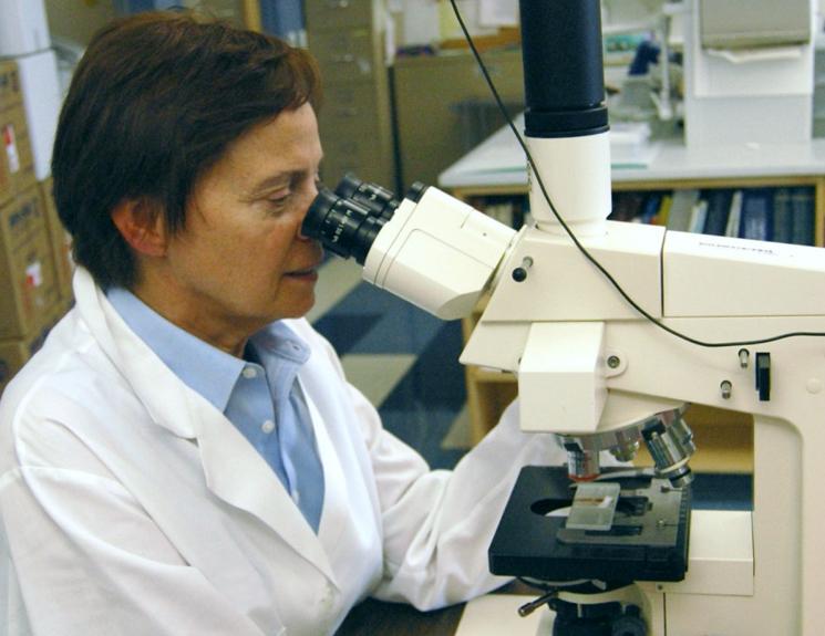 operatív szemészeti mikroszkóp