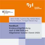 DJI Handbuch