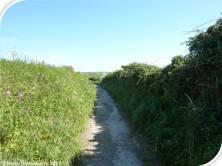 Lanes 3