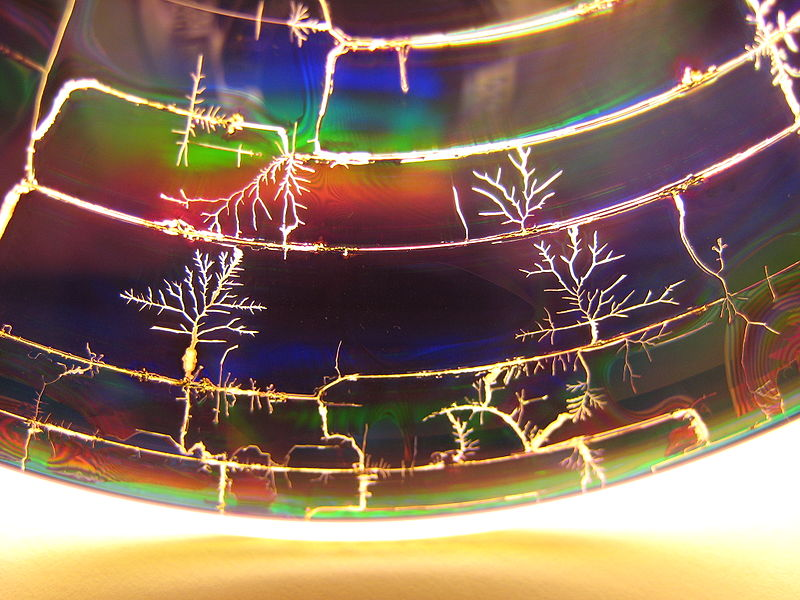 800px-microwaved_disks-cover_fractal_trees_ceb400491