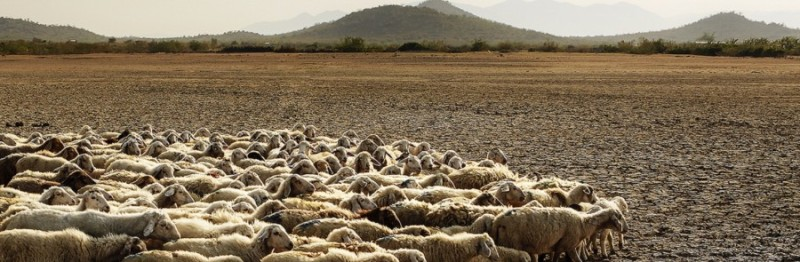 Desertification Effects, Causes, And Examples : Top 10 List ...