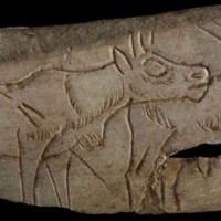 Paleoneurology & Prehistoric Cave Art, Paintings, & Carvings