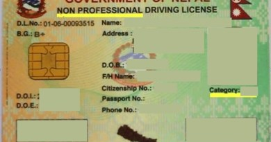 Smart Card Driving License