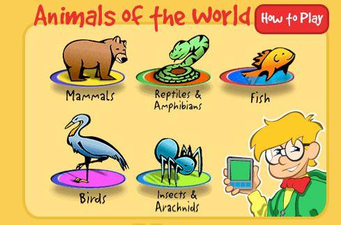 Resultado de imagen de vertebrates and invertebrates games