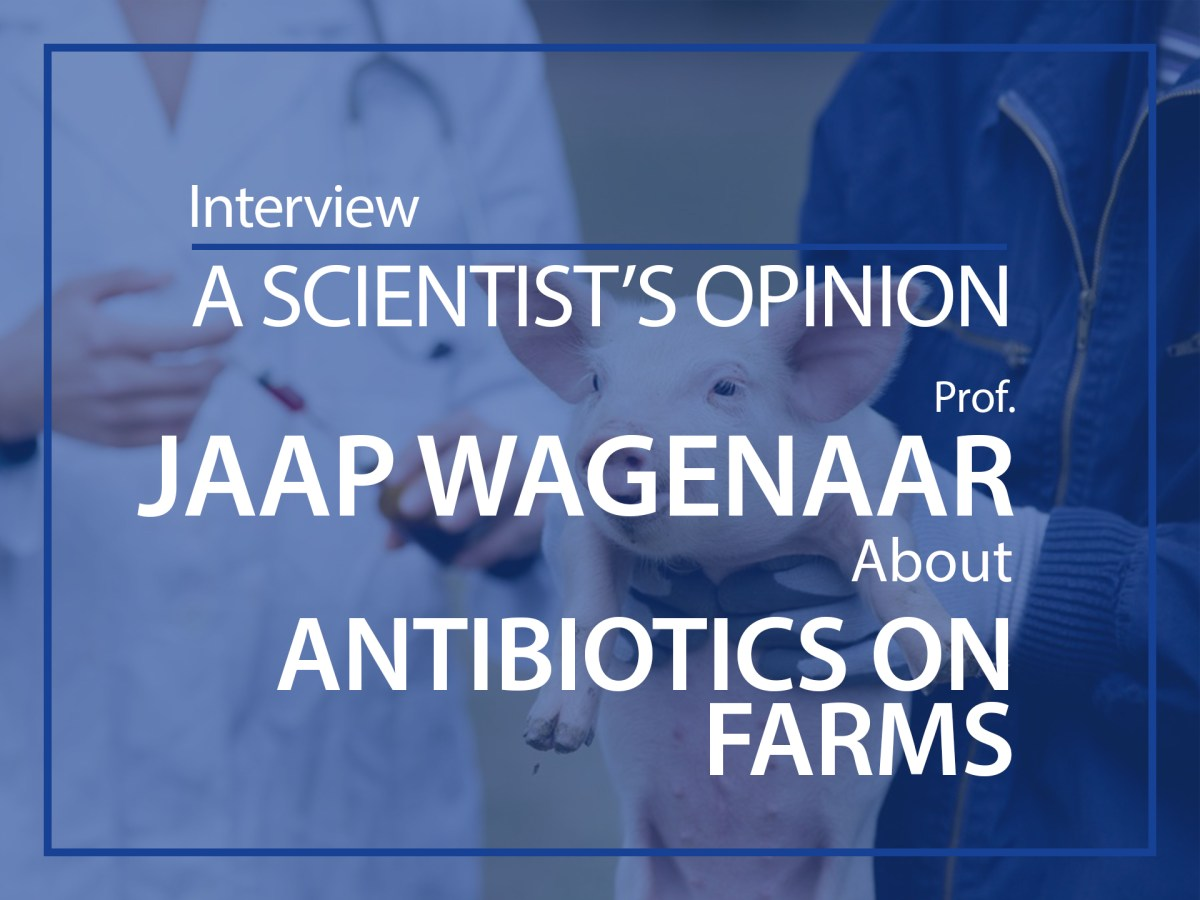 A scientist's opinion : interview with Jaap Wagenaar about antibiotics on farms