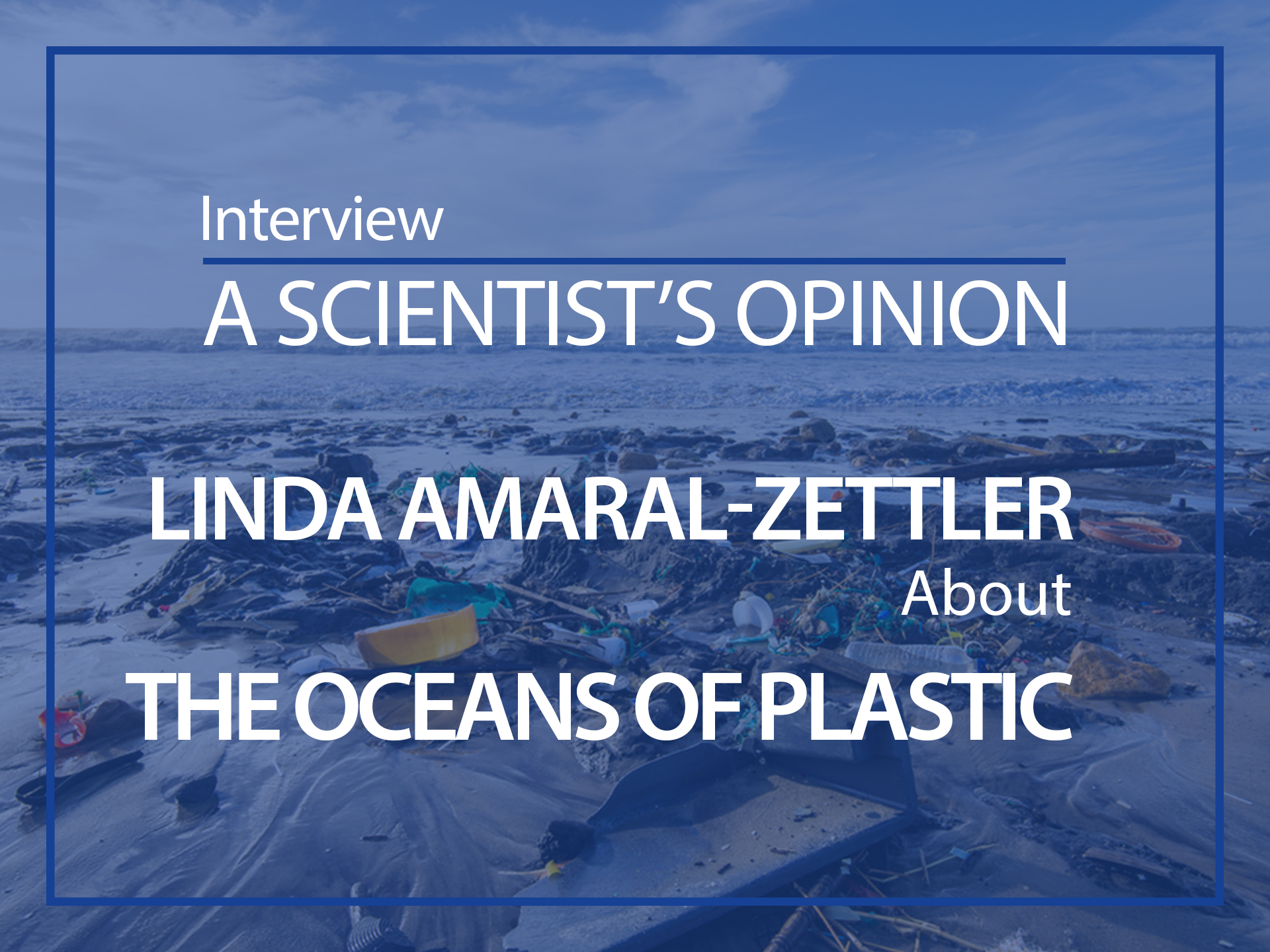 A scientist's opinion : Interview with Linda Amaral-Zettler about plastic pollution