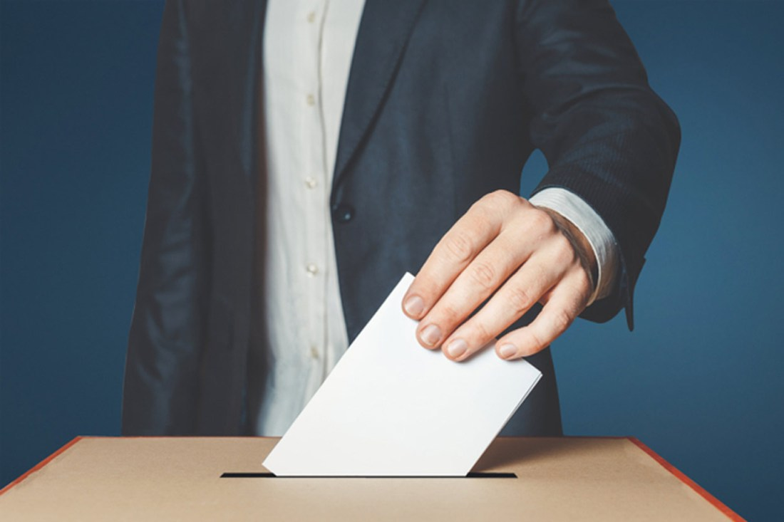 ESMH Online disinformation during elections
