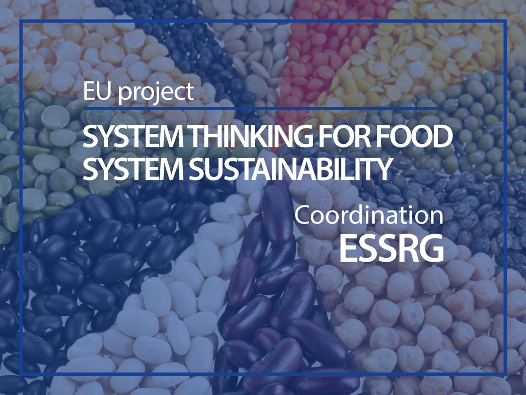 EU Project : System thinking for food system sustainability