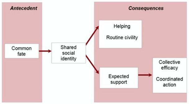 Social identity model