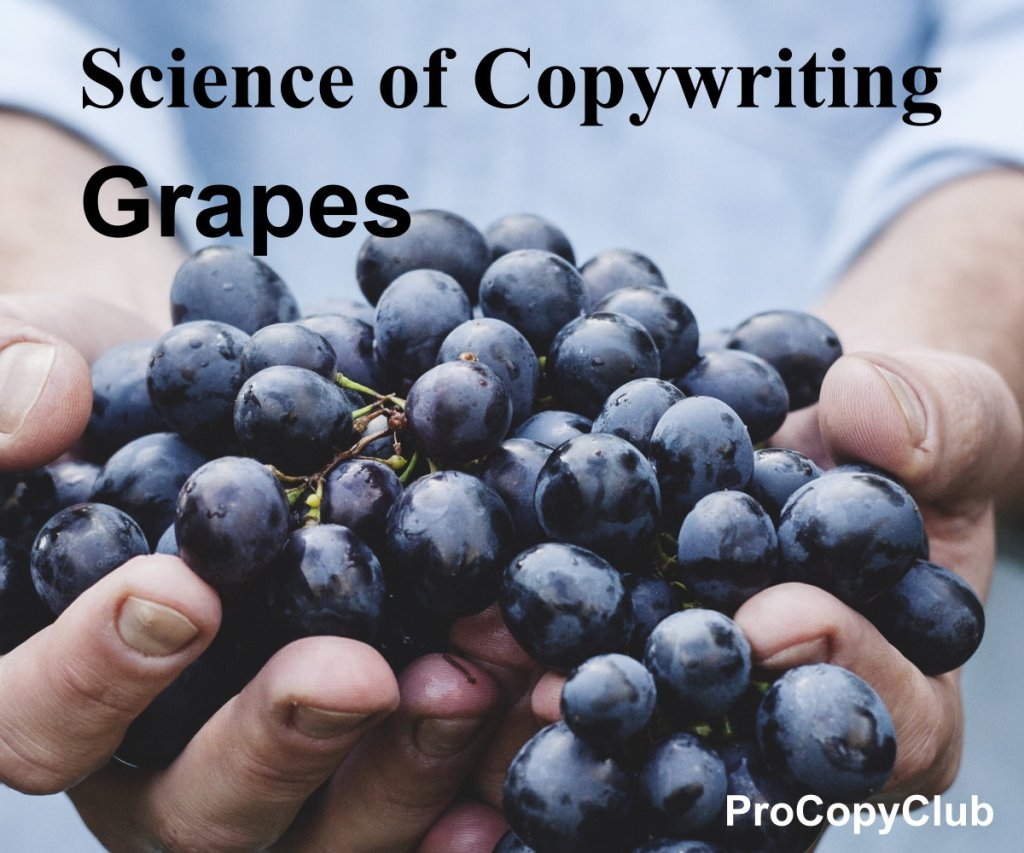 natural born copywriting image of grapes