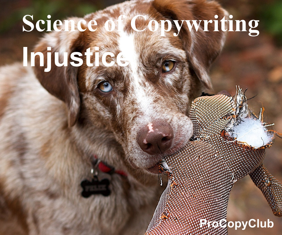 injustice and copywriting - image of dog