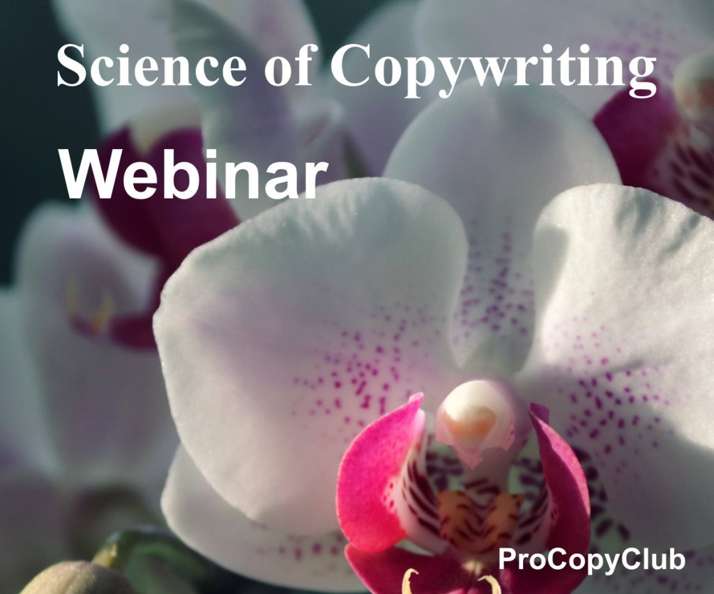 How To Write A Better Webinar Script All Copywriters Should Take Note Of
