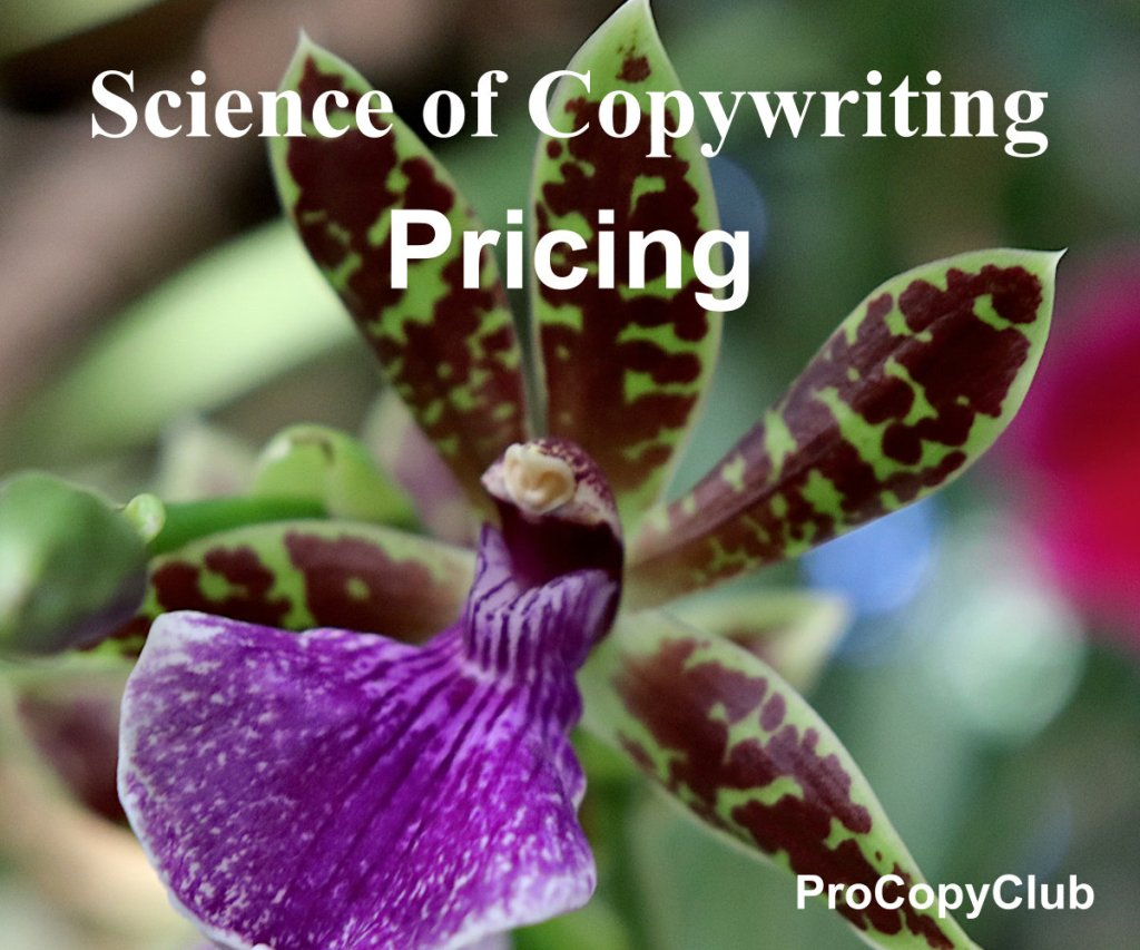 How Much Do Copywriters Charge For Their Work?