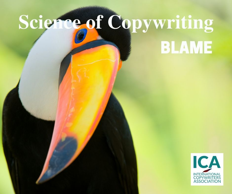 The Blame Game Part 1 [Copywriting Guides]