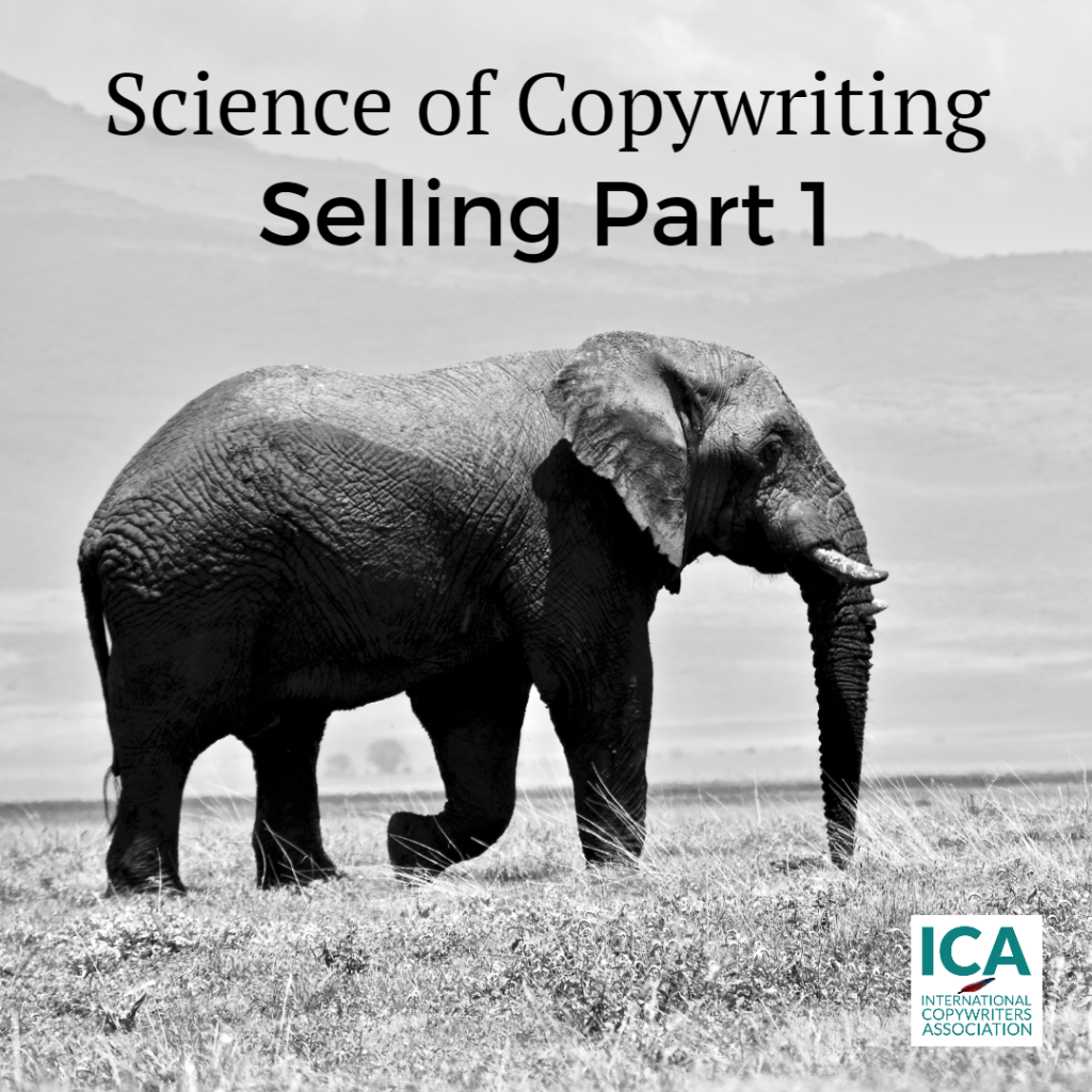 How To Sell Using Words Alone Part 1 [Copywriting Guides]