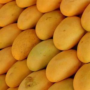 "mango - MRI, Multan introduced two new varieties named ""Azeem Chaunsa"" and ""Chenab Gold"""