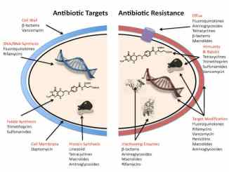 Antibiotic-resistance-mechanisms