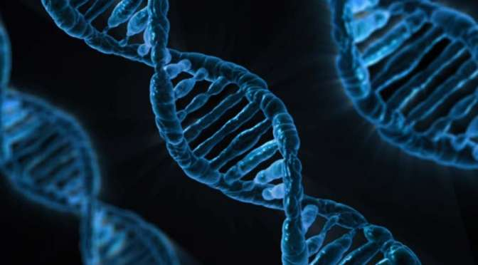 Who discovered that DNA is the Genetic Material?