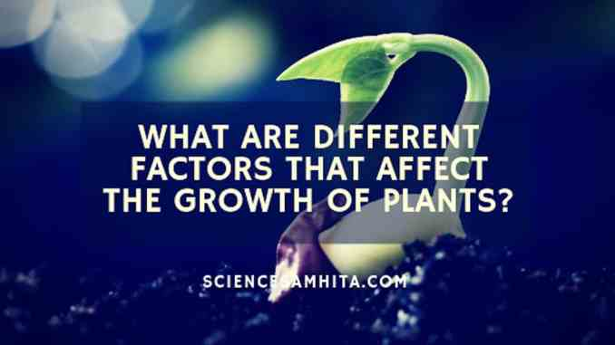 factor_affecting_plant_growth
