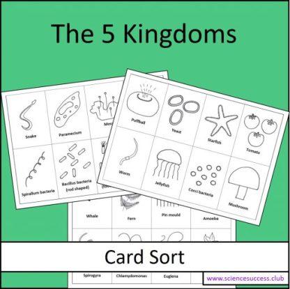 Screenshots of the 5 Kingdoms card sort