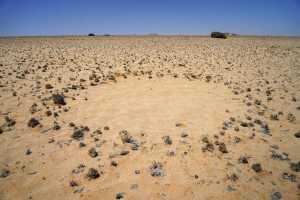 O que são os círculos de fadas no deserto da Namíbia