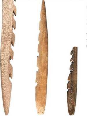 Ossos humanos foram usados para fazer pontas de flecha pelos europeus da Idade da Pedra